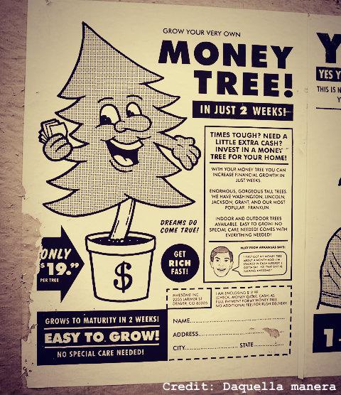 Cuomo money college stem SUNY CUNY